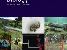 """Cover of the special issue of Journal of Evolutionary Biology on """"Genetics and Genomics of Adaptation"""""""